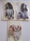 Hand Made Wooden Jumbo Magnet in English Cocker Spaniel, Spaniel or Shih Tzu